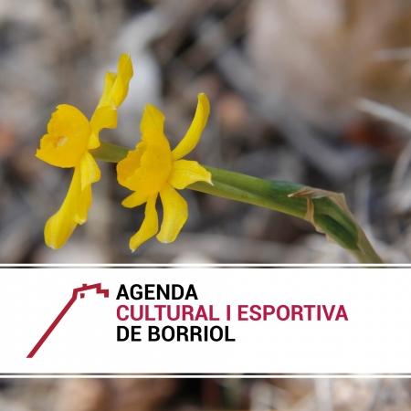 AGENDA CULTURAL Y DEPORTIVA PARA EL PRIMER TRIMESTRE 2019 EN BORRIOL