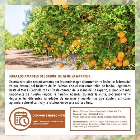 Visita Guiada: Ruta de la Naranja