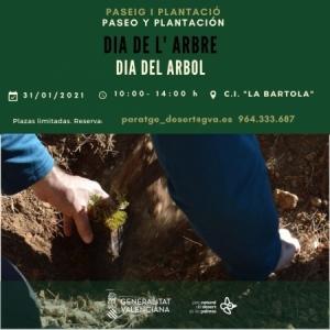 Día del árbol: paseo y plantación
