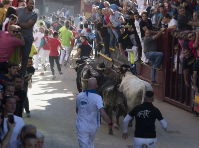 Suelta de vaquillas en Arañuel