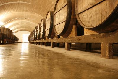 Degustación y visita guiada - Bodegas Carmelitano