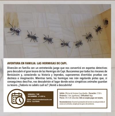 Aventura en familia: Las hormigas de Capi - Benicàssim