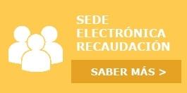 Seu Electrònica del Servei de Gestió, Inspecció i Recaptació de la Diputació de Castelló