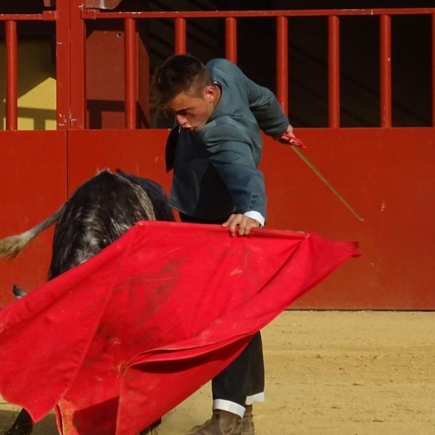 Final del Bolsín Taurino de la Diputación