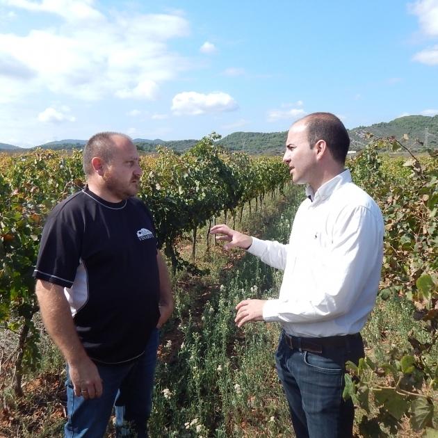 La Diputación respalda a los bodegueros para posicionar los vinos de la provincia