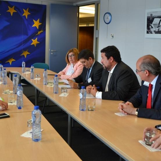 Moliner lidera una reunió de diputacions amb la UE