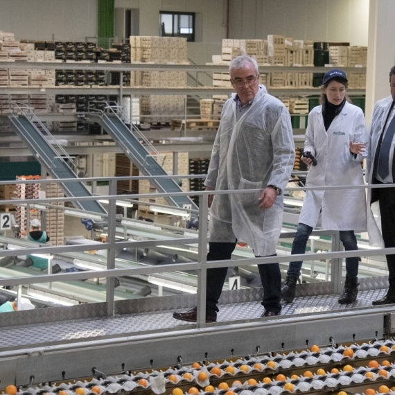 Moliner recolza el sector citrícola de la província