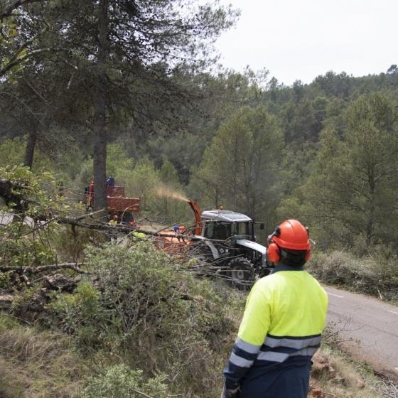 Las brigadas forestales de Diputación y Generalitat han actuado en más de 130 kms en 43 pueblos