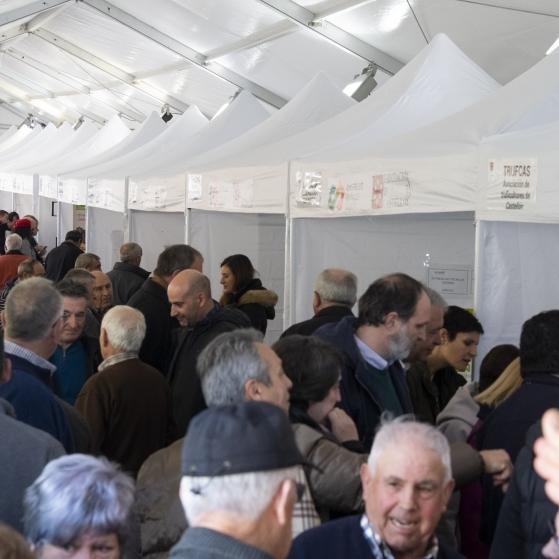 Diputació potència el mercat de la tòfona de la província i l'economia rural