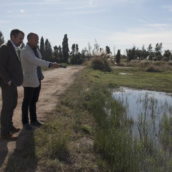 El Plan Provincial contra los Mosquitos de la Diputación hará tratamientos en la marjal