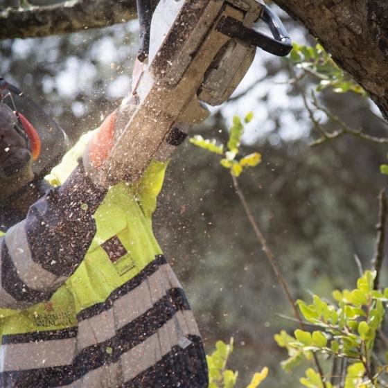 Diputación refuerza la prevención de incendios en las zonas más sensibles