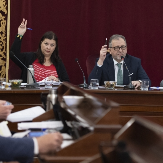 El ple de la Diputació s'estrena en format telemàtic i aprovarà el nou Pla 135 i les ajudes de benestar social