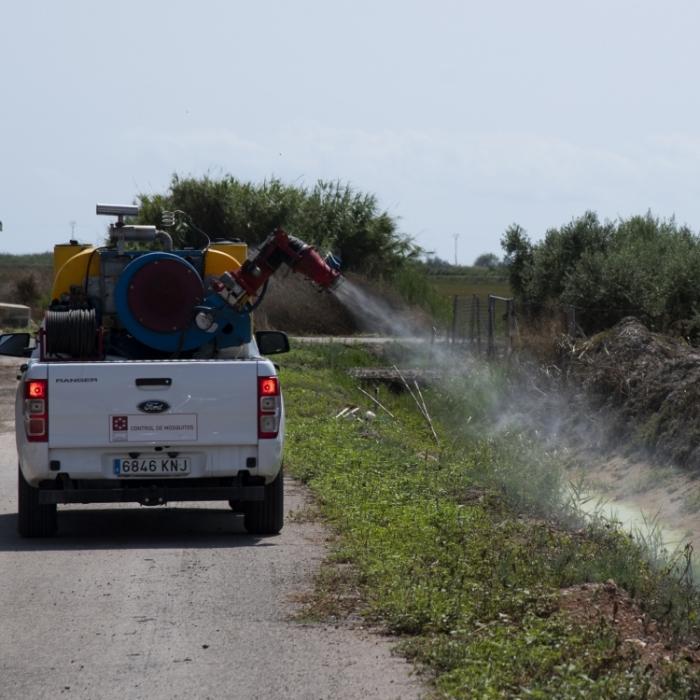 La Diputació intensifica els tractaments contra el mosquit tigre a la província de Castelló