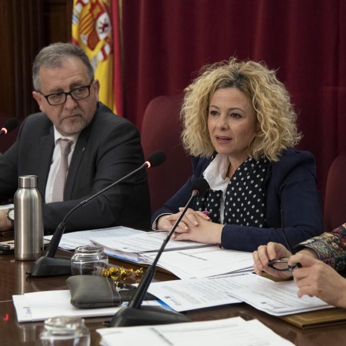 La Diputació de Castelló assistirà als municipis en l'elaboració de plans de contingència i emergència per a les platges de la provincia