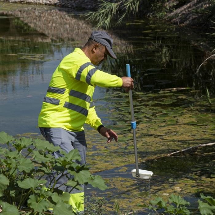 María Jiménez anima a los ayuntamientos a seguir las indicaciones de los informes de la Diputación para ser más eficaces contra los mosquitos