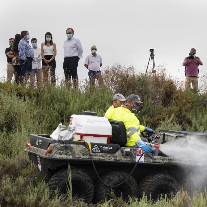 La Diputación de Castellón activa «al cien por cien» el plan provincial contra los mosquitos para minimizar la afección y las molestias en la población
