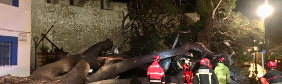 El Consorcio Provincial de Bomberos de la Diputación ha atendido ya 65 situaciones de emergencia