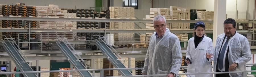 Diputación y Berasategui juntos en la promoción y puesta en valor de los cítricos de Castellón