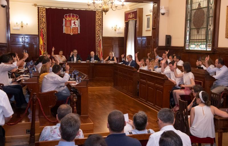 El Ple aprova una Declaració Institucional sobre l'eradicació de mosquits